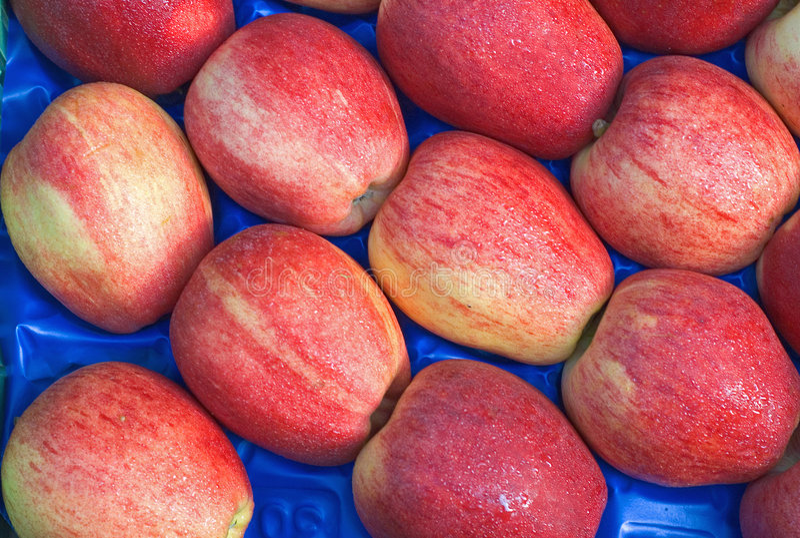 Gala Apples in MArket stock photos
