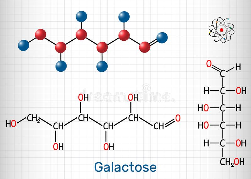 Galactose, D-galactose, milk sugar molecule. Linear form. Structural chemical formula and molecule model. Sheet of paper in a cage. Vector illustration vector illustration