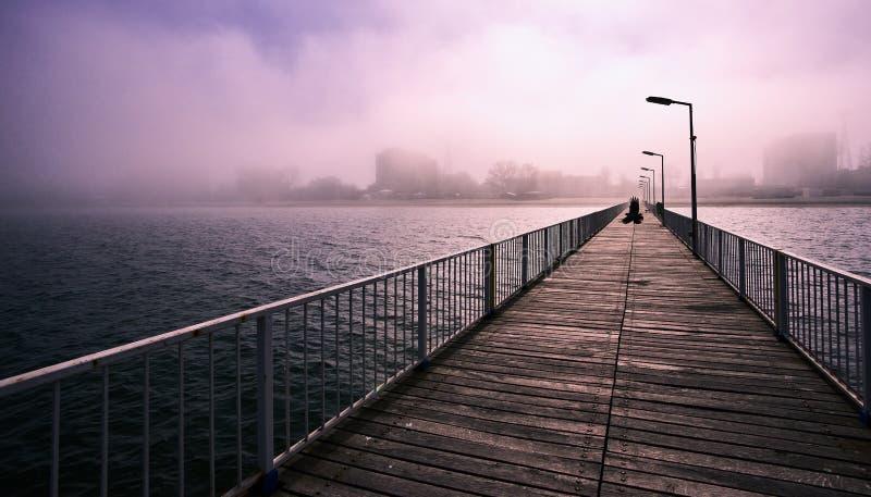 Galande fågelfluga över en bro på Blacket Sea i en disig dag arkivbilder
