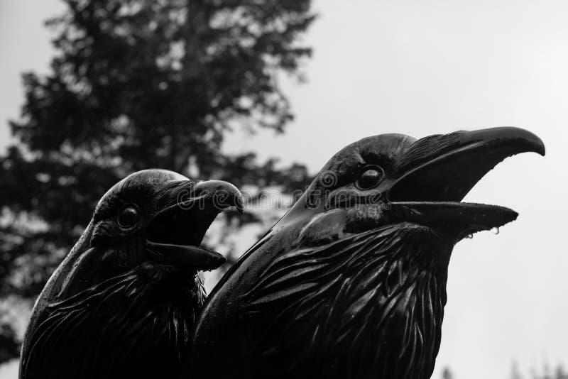 Galande och Raven Statue fotografering för bildbyråer
