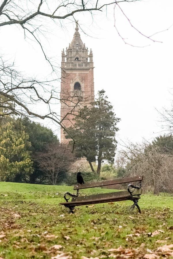 Galande som sätta sig på en bänk i Front Of Cabot Tower Bristol arkivbilder