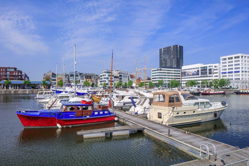Galanteryjni jachty cumowali przy Willemsdok piękni marinas w Europa, dalej, Antwerp, Belgia obraz stock