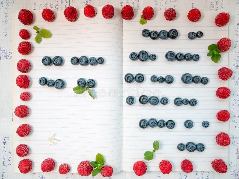 Galanteryjny kreatywnie copybook wypełniający z liniami robić zdrowi cukierki, dekorować z liśćmi i obrazy stock