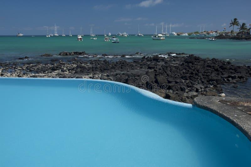 Galapagos fotografie stock libere da diritti
