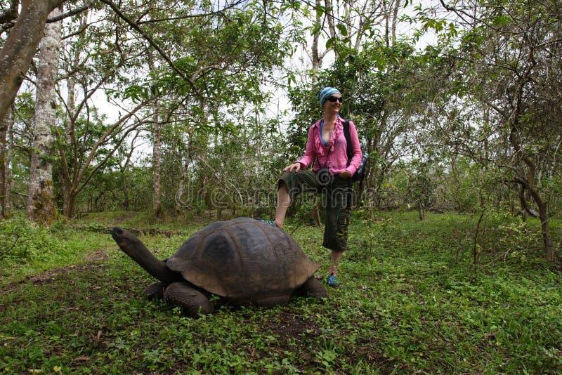 galapagos dziewczyny żółw zdjęcia royalty free