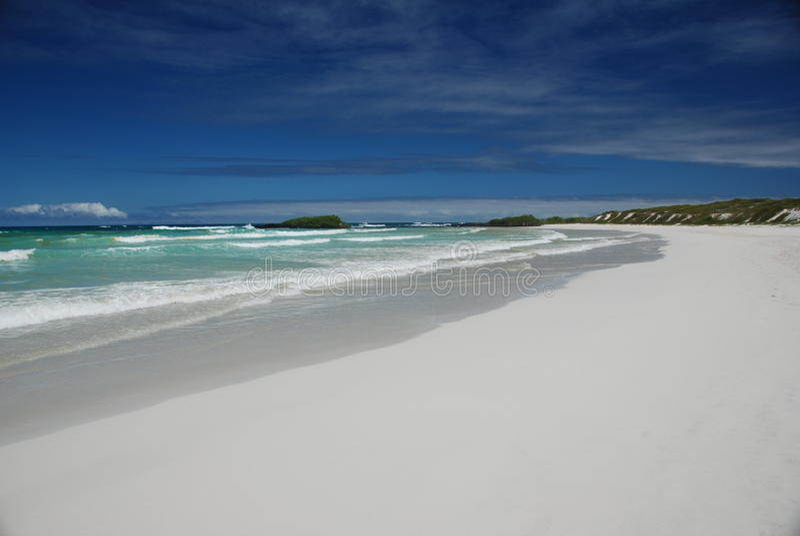 Galapagos Pacific Beach Royalty Free Stock Photo