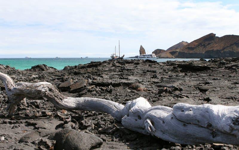 Download Galapagos Scenery stock photo. Image of water, tour, galapagos - 6221884