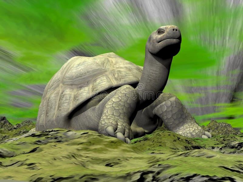 Galapagos-Schildkröte, die Sie betrachtet - 3D übertragen stock abbildung