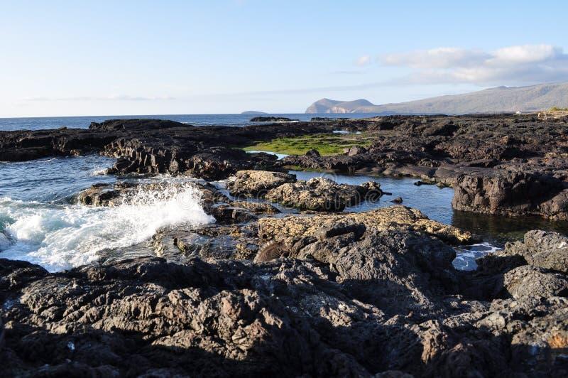 Galapagos-Spritzen stockbild
