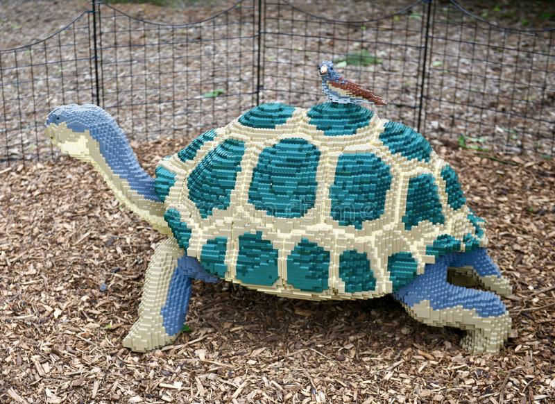 Galapagos Tortoise with Darwin Finch. This is a Spring picture of a piece of public art titled: Galapagos Tortoise with Darwin Finch, on exhibit at the Morton royalty free stock image