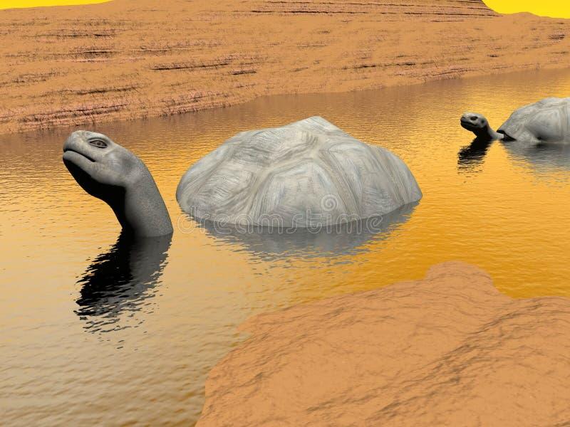 Galapagos tortoises in water - 3D render stock illustration