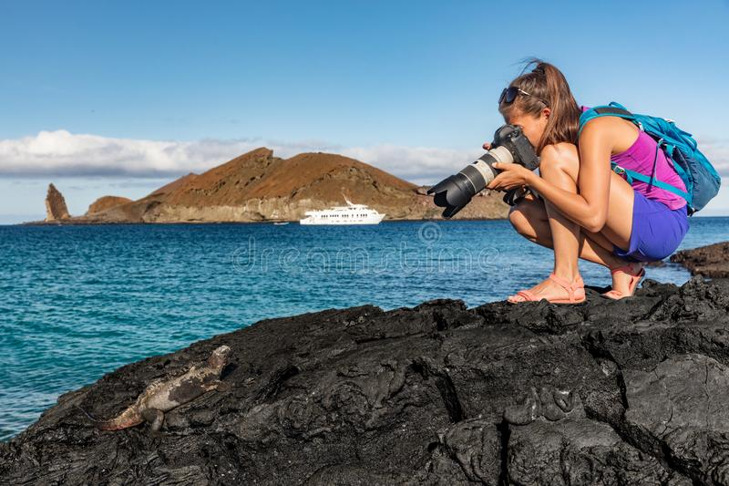 Galapagos tourist photographing marine iguana on Santiago Island in Galapagos Islands. Cruise ship and Pinnacle Rock and Bartolome Island in background. Famous royalty free stock image