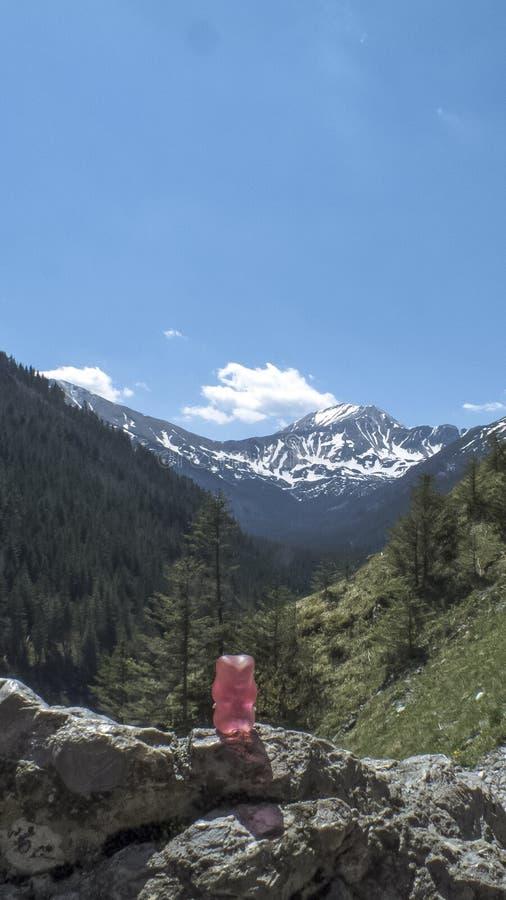 Galarety w górach zdjęcie royalty free