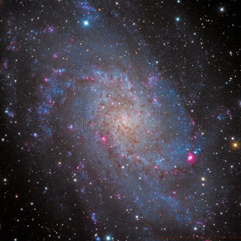 Galassia della girandola M33 fotografie stock libere da diritti