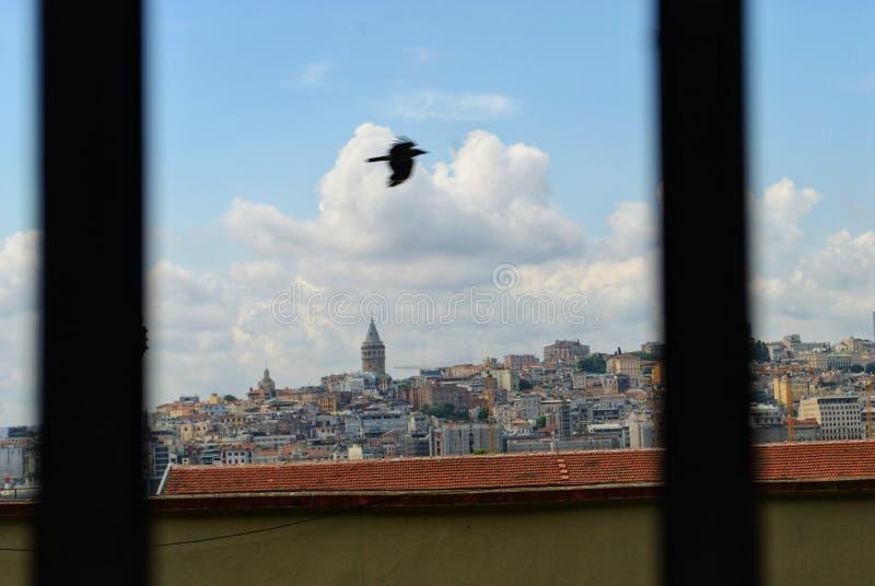 Galata. Tower, istanbul, hagia, sopha, hagiasophia royalty free stock photo