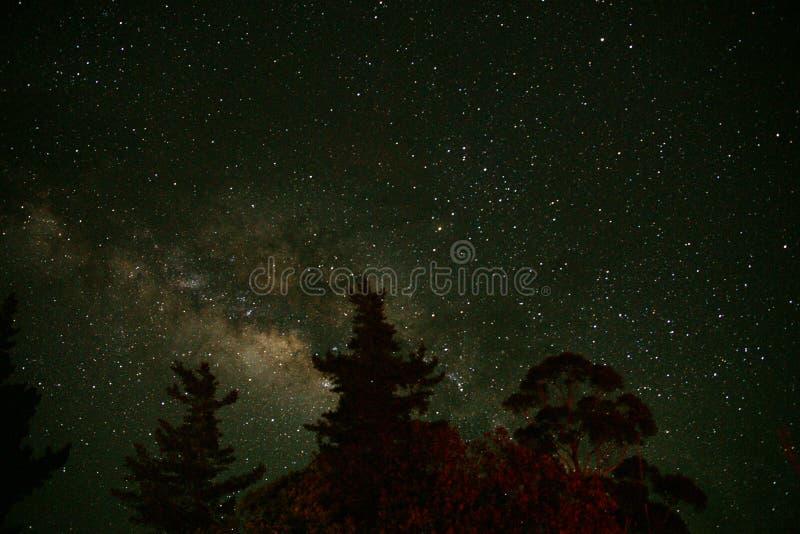 galax royaltyfria bilder