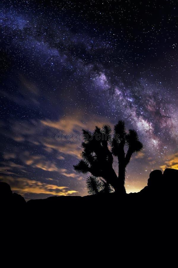 Galaxie de manière laiteuse au-dessus du désert photographie stock libre de droits