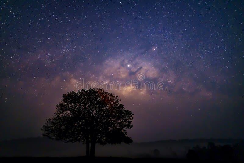 Galaxie de manière laiteuse, longue photographie d'exposition avec le grain Étude d'étoile et astronomie de manière laiteuse au p images stock