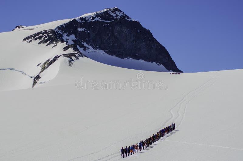 Galdhøpiggen, Norways highest mountain royalty free stock photos