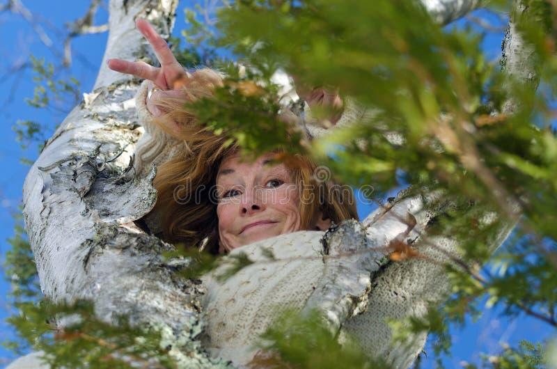 Galen hög kvinna i ett träd royaltyfria bilder
