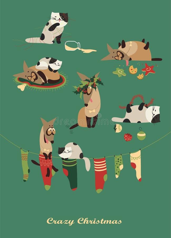 Galen hund och melankoliskt fira för katt stock illustrationer