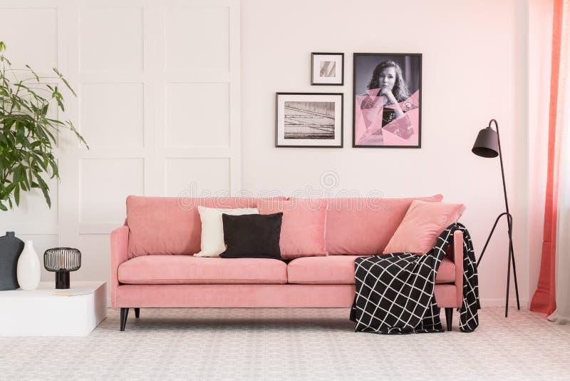 Galeria dos cartazes na parede na sala de visitas elegante interior com sofá cor-de-rosa e a lâmpada industrial fotografia de stock royalty free