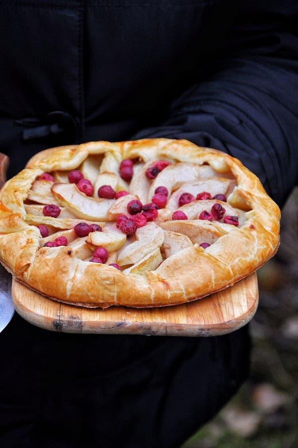 Galette della frutta con le mele e le bacche Apra il dolce Fucilazione all'aperto fotografia stock libera da diritti
