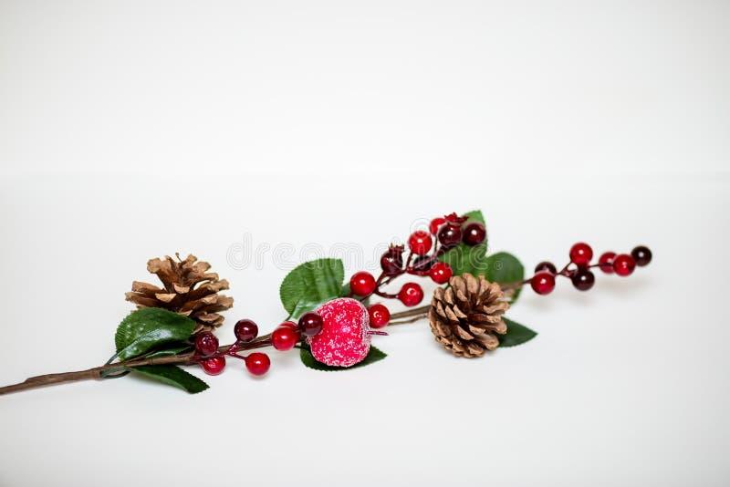 Galho decorativo do Natal como uma decoração do feriado imagens de stock