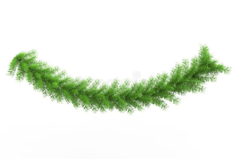 Galho verde-claro do pinheiro ilustração royalty free
