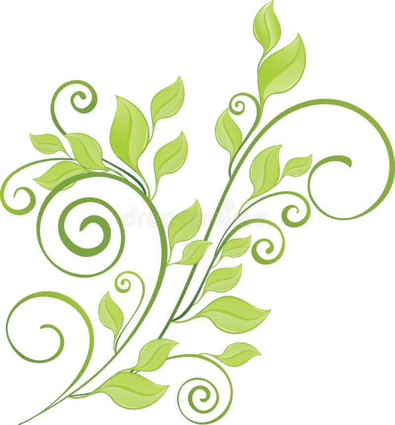 Galho verde da mola ilustração do vetor