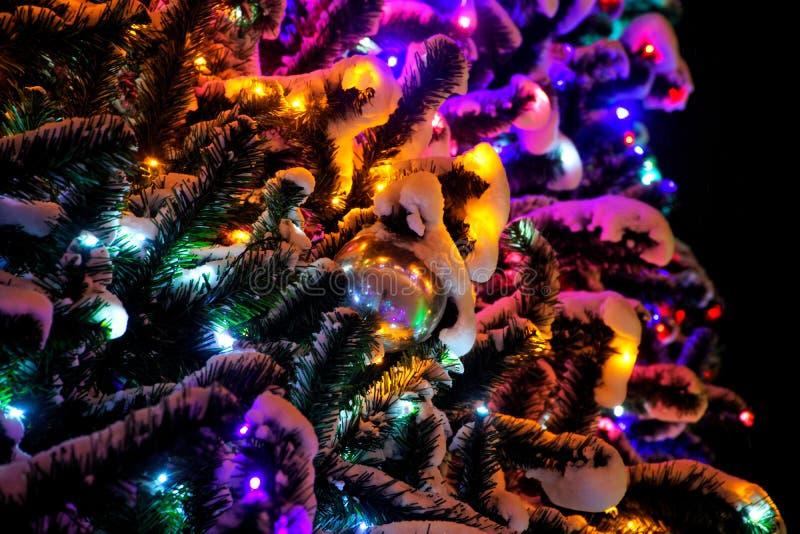Galhos artificiais do abeto vermelho cobertos com a neve e decorados com brinquedos Luzes coloridos do diodo emissor de luz fotos de stock royalty free