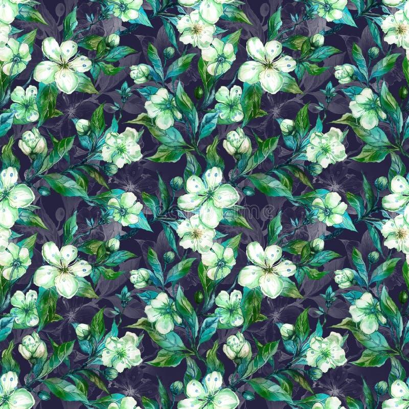 Galhos bonitos da árvore de fruto na flor Flores brancas e verdes no fundo cinzento primavera Teste padrão floral sem emenda ilustração royalty free