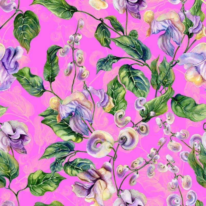 Galhos bonitos da videira do caracol com as flores roxas no fundo cor-de-rosa brilhante Teste padrão floral sem emenda Pintura da ilustração royalty free