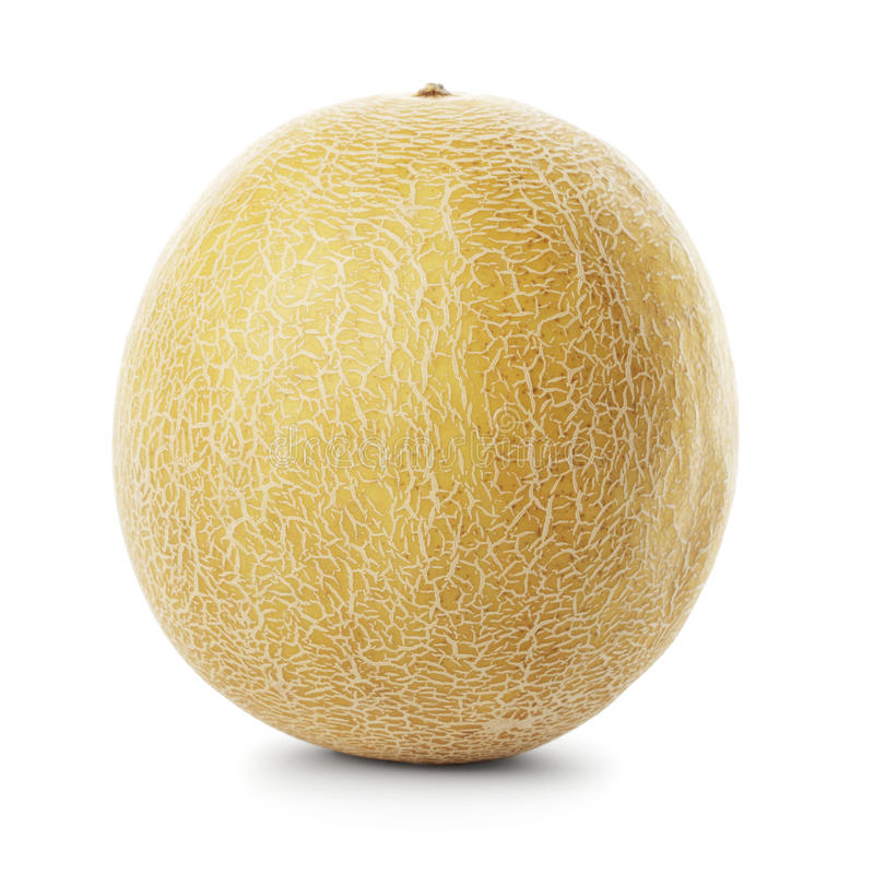 Download Galia melon stock photo. Image of whole, isolated, round - 11562364