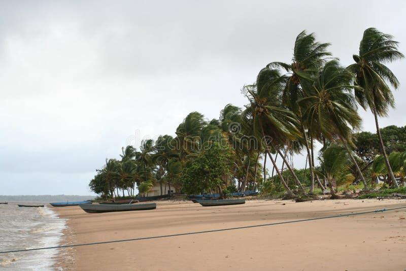 Galibi 1 do Suriname fotografia de stock