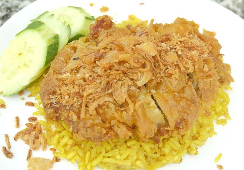 Galinha Biryani ou galinha e arroz temperados imagem de stock royalty free