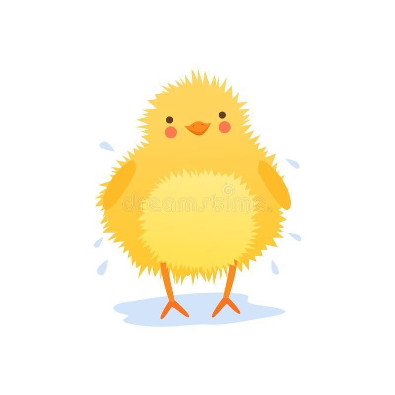 Galinha bonito do bebê que agita a água após ter banhado, a ilustração engraçada do vetor do caráter do pássaro dos desenhos anim ilustração do vetor