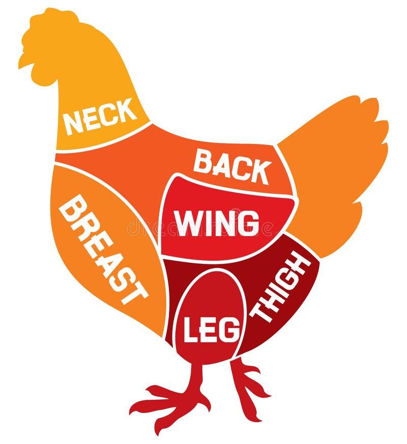 A galinha corta o diagrama ilustração do vetor