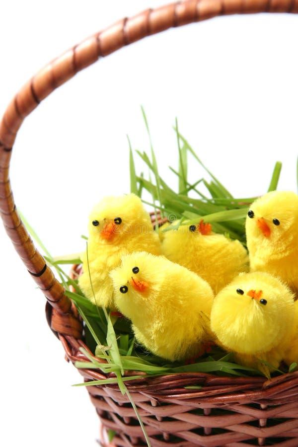 Galinha de Easter foto de stock royalty free