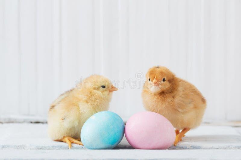 Galinha e ovo da páscoa no fundo de madeira imagem de stock royalty free