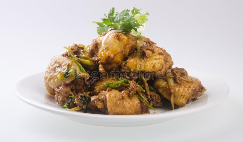 Galinha fritada do Stir com alimento do chinês do gengibre foto de stock royalty free