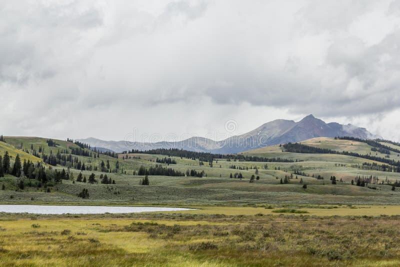 Gallatin Bergketen, het Nationale Park van Yellowstone royalty-vrije stock foto