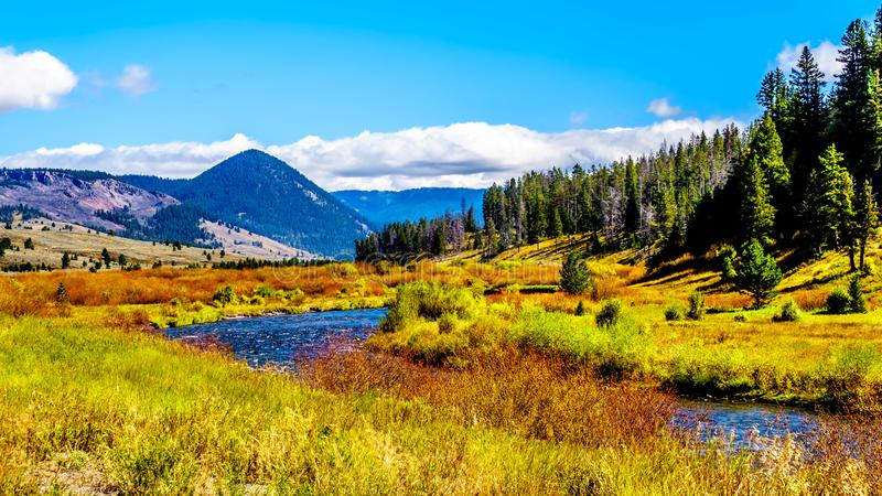 The Gallatin River as it runs through the western most part of Yellowstone National Park. Along Highway 191 in Montana, United States of America stock photos
