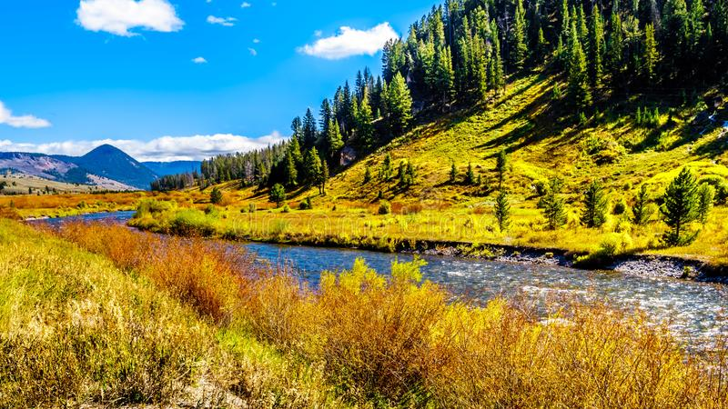 The Gallatin River as it runs through the western most part of Yellowstone National Park. Along Highway 191 in Montana, United States of America royalty free stock photo