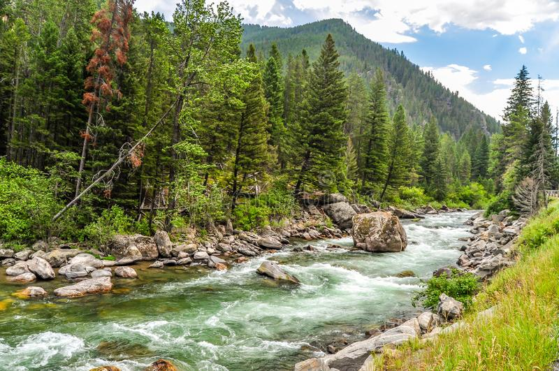The Gallatin River Flowing Through the Mountains of Montana royalty free stock photography