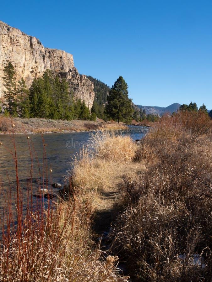 Gallatin Rzeczny spływanie Za Yellowstone falezami fotografia royalty free