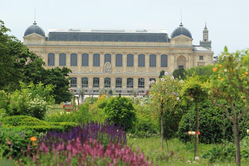 galleri stora paris arkivbild