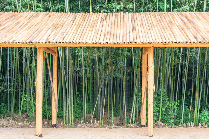 gallery and bamboo royalty free stock images