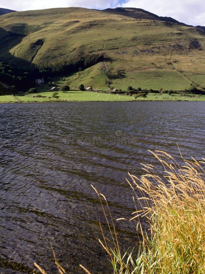 Galles pittoresco - lago Tal-y-llyn immagini stock
