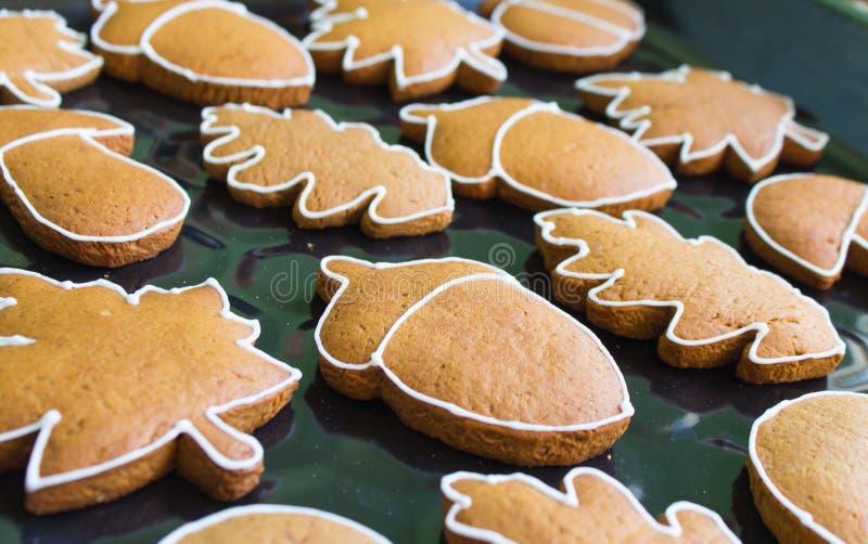 galletas bajo la forma de bellotas y hojas de árboles en una bandeja imagen de archivo